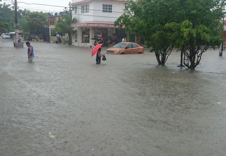 Las afectaciones por el clima fueron desde el pasado viernes. (Israel Leal/SIPSE)