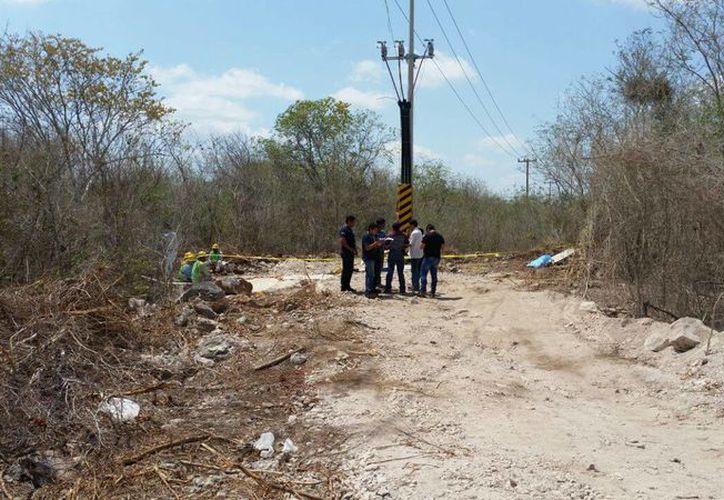 Un trabajador de la CFE murió electrocutado a un costado de la carretera Mérida-Progreso. (Aldo Pallota/Milenio Novedades)
