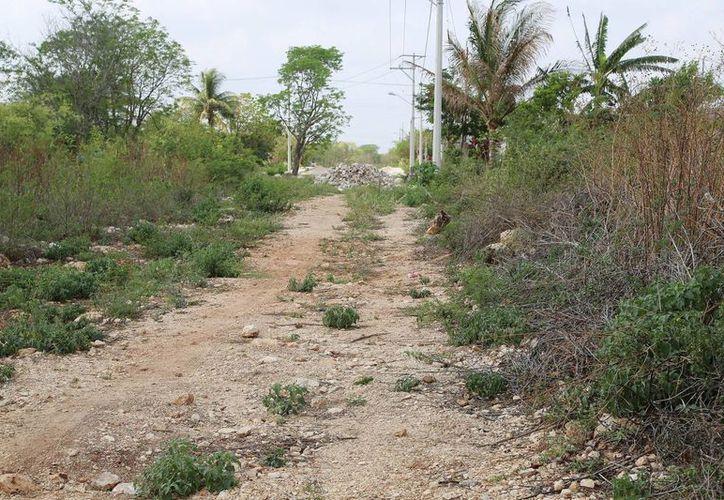 En la comisaría Santa Cruz Palomeque el Ayuntamiento pavimentará calles, construirá aceras e introducirá servicios de agua y alumbrado. (Cortesía)
