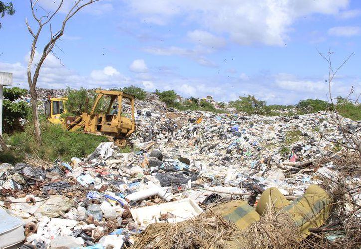Este martes iniciaron las obras de saneamiento del basurero que alargará la vida del lugar.  (Joel Zamora/SIPSE)