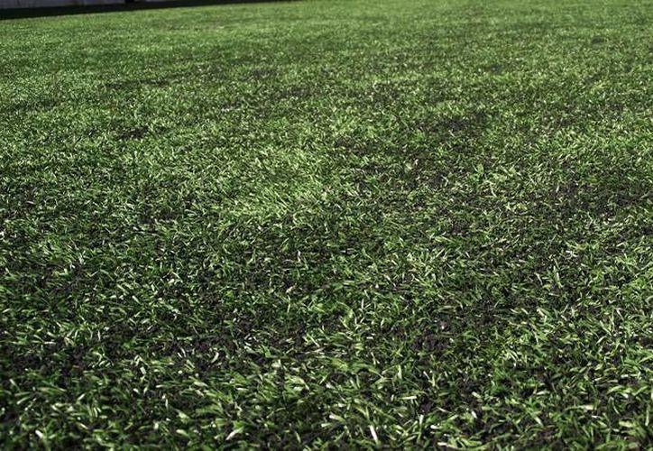 El rayo cayó en el momento en que se jugaba un partido de futbol en la cancha del fraccionamiento Flamboyanes de Progreso. (SIPSE)