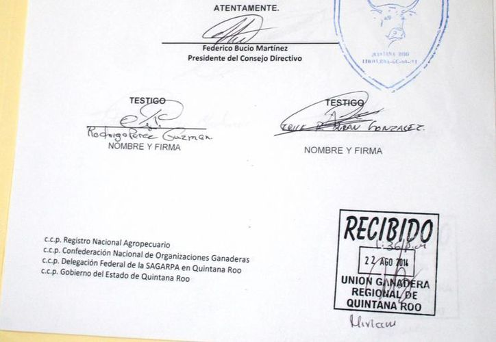 El documento en disputa sólo cuenta con la firma de dos testigos, cuando se requiere el respaldo de todos los agremiados. (Edgardo Rodríguez/SIPSE)