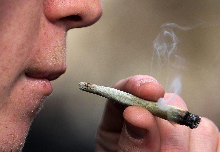 """La legalización del uso de la marihuana """"medicinal"""" avanza cada día en más estados de Estados Unidos (Archivo/SIPSE)"""