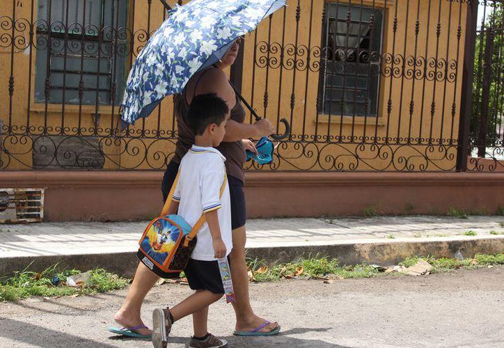 El 80% de los alumnos de la telesecundaria de la comunidad, se han ausentado debido a la enfermedad. (Joel Zamora/SIPSE)