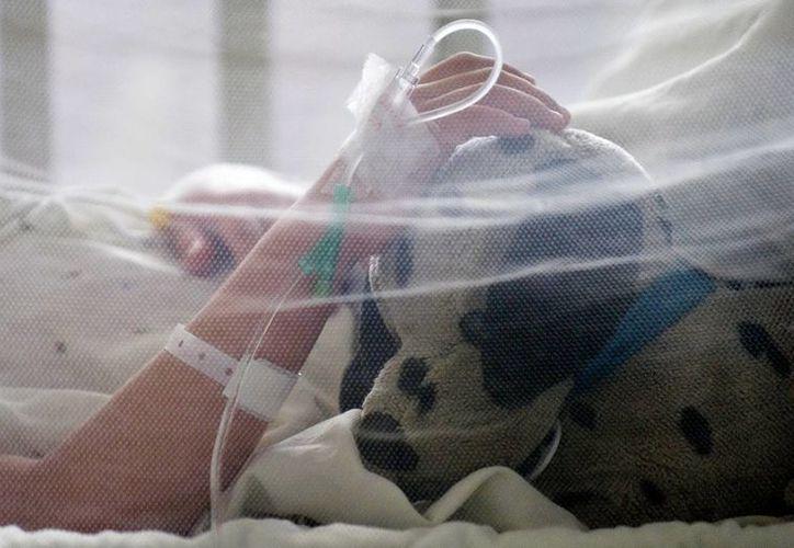 Durante la semana epidemiológica número 36, Yucatán registró 14 casos de dengue por día. (Agencias)