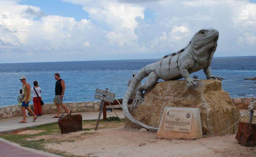 Las diversas actividades llaman la atención de los turistas. (Tomás Álvarez/SIPSE)