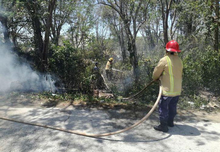 Previenen incendios forestales y agrícolas en el municipio de Felipe Carrillo Puerto, (José Chi/SIPSE)