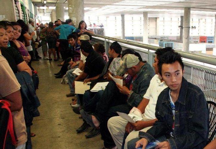 Como de costumbre, se espera que los yucatecos que no han actualizado la credencial del IFE, saturen los módulos el fin de año. (Archivo SIPSE)