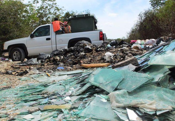 Incendio en Playa del Carmen fue controlado, evitando daños humanos. (Redacción/SIPSE)