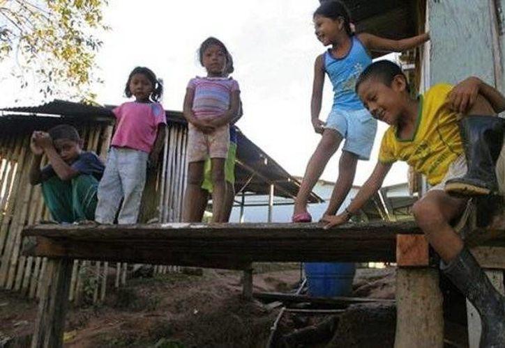 Se informó que 135 niños correspondían al grupo indígena awa. (diarioelpopular.com)