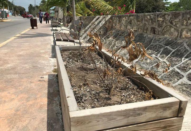 Los turistas que arriban al Pueblo Mágico observan con desconcierto las estructuras instaladas sobre la avenida Costera.