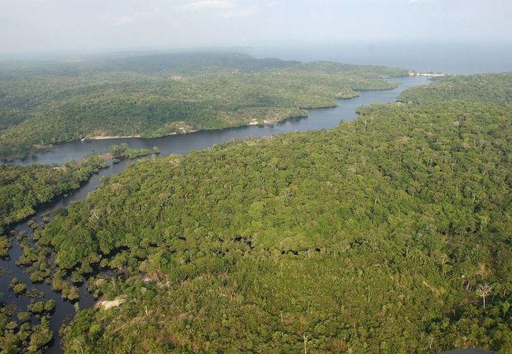 Fotografía de archivo de la Amazonia brasileña. (Archivo/EFE)