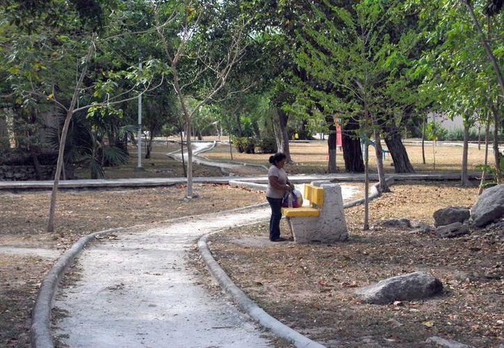 Denuncian habitantes zonas muy solitarias y poco vigiladas por las autoridades. (Tomás Álvarez/SIPSE)