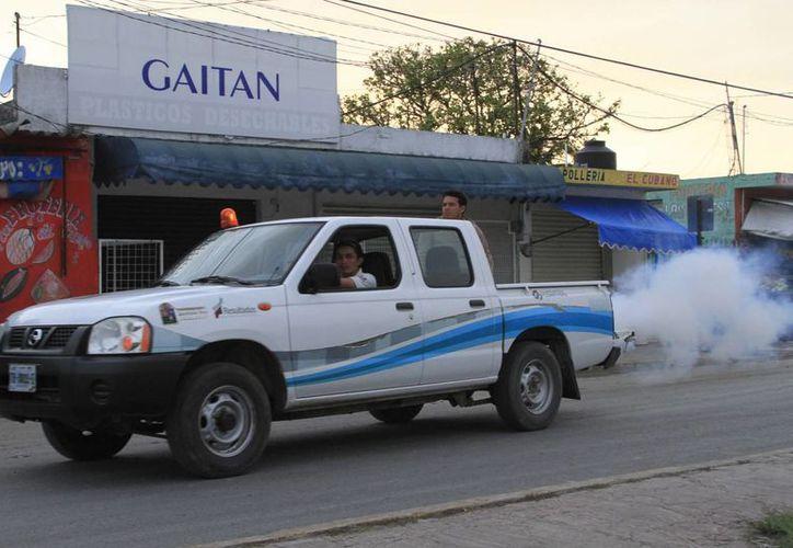 Autoridades han reforzado la campaña de fumigación ante la presencia de moscos. (Ángel Castilla/SIPSE)