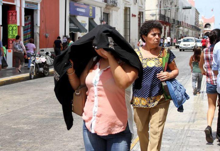 Imagen de una mujer que se protege con una prenda del fuerte sol que ha afectado desde hace varios días. El calor de este jueves llegó hasta los 40 grados centígrados. (Amílcar Rodríguez/Milenio Novedades)