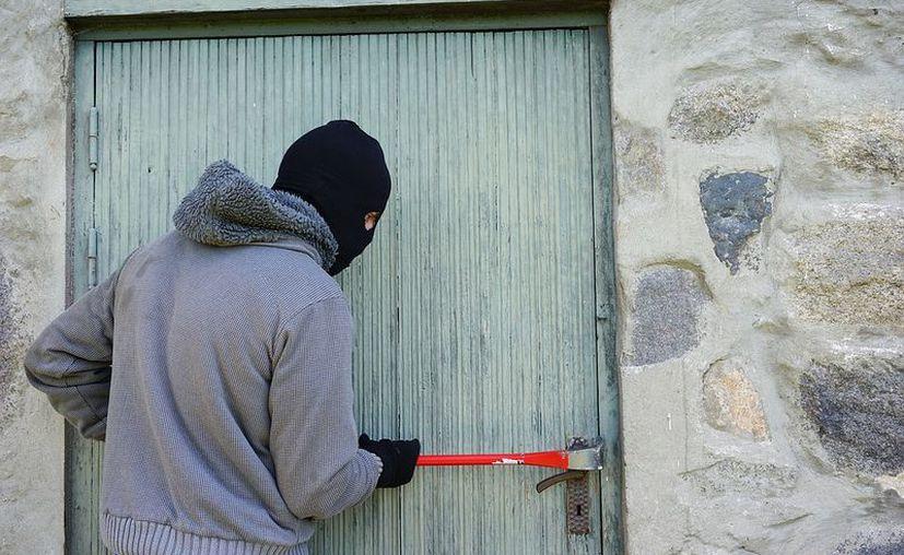Autoridades señalaron que los perros actuaron en defensa del hogar y de su dueña. (Pixabay/ Imagen ilustrativa)