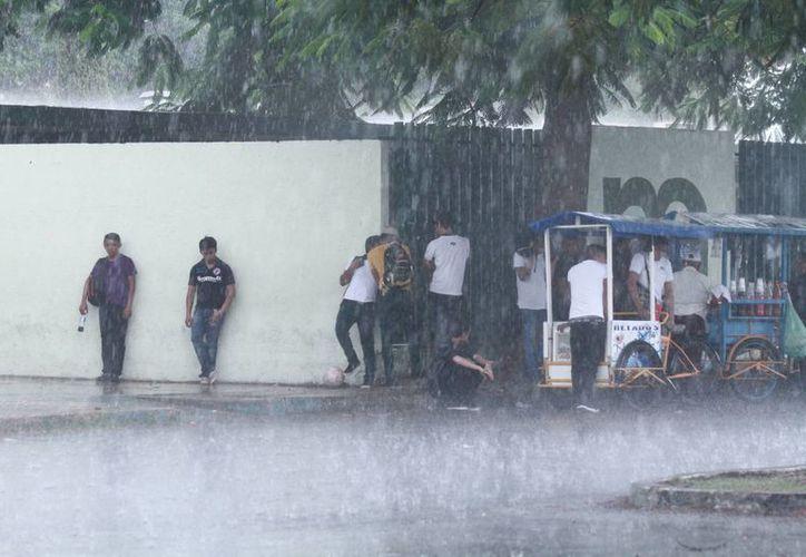 Las lluvias en agosto han estado por debajo del promedio, según la Conagua, pero se espera que en septiembre caigan más. (Jorge Acosta/SIPSE)