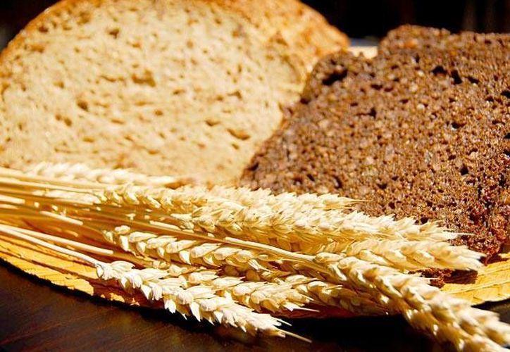 Consumir con regularidad cereales integrales te ayudará a tener mejor salud y evitar la aparición de enfermedades. (nutricion.ufm.edu)