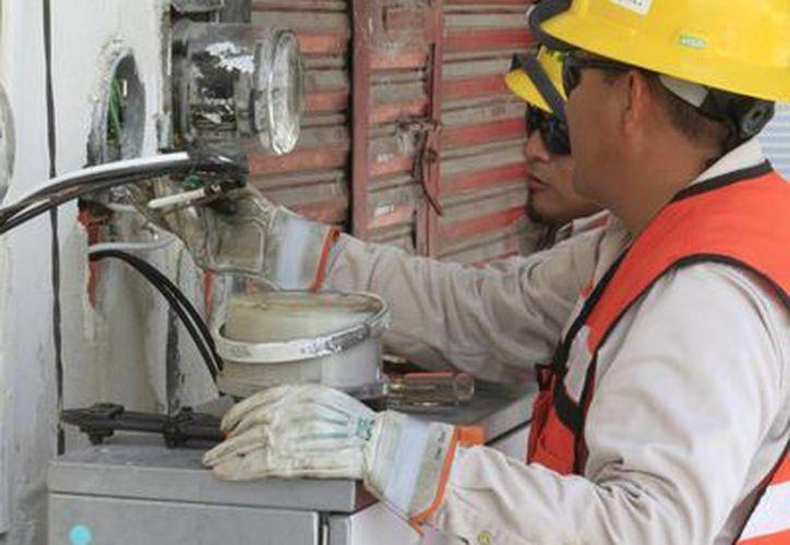 Personal de la CFE supervisa las obras de energía eléctrica en avenida De los Héroes. (Ángel Castilla/SIPSE)