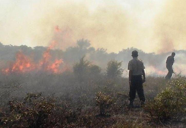 Se reitera a la población en general que en abril están prohibidas las quemas. (Archivo/SIPSE)