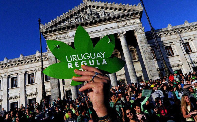 Inicia en farmacias de Uruguay venta de marihuana para uso recreativo