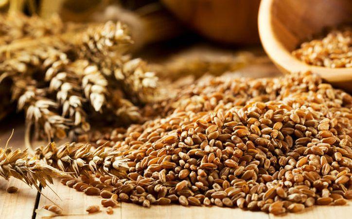 Los granos enteros, como el arroz integral, el trigo integral, la avena y la cebada, aumentan la salud cardiovascular. (Blogs).