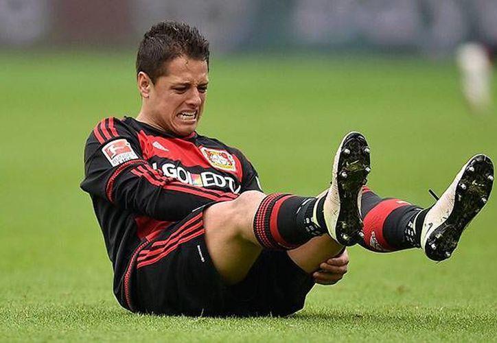 Javier Hernández sufrió una lesión tras ser pisado sin intención en un balón que disputó al minuto 62 del encuentro de Bundesliga. (AP)