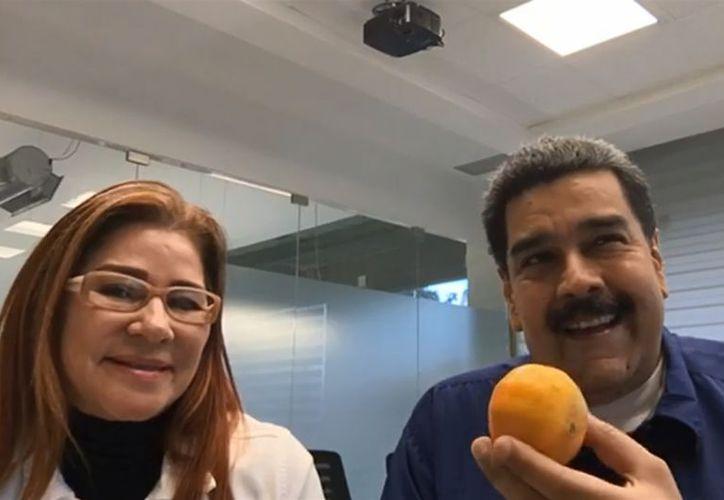Comiendo mandarina, el presidente de Venezuela arrancó en redes su campaña presidencial (Foto: Captura de video)
