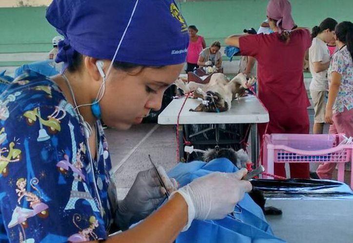 Se detectan más casos de cáncer, los cuales algunos pueden ser eliminados a través de cirugía.  (Milenio Novedades)