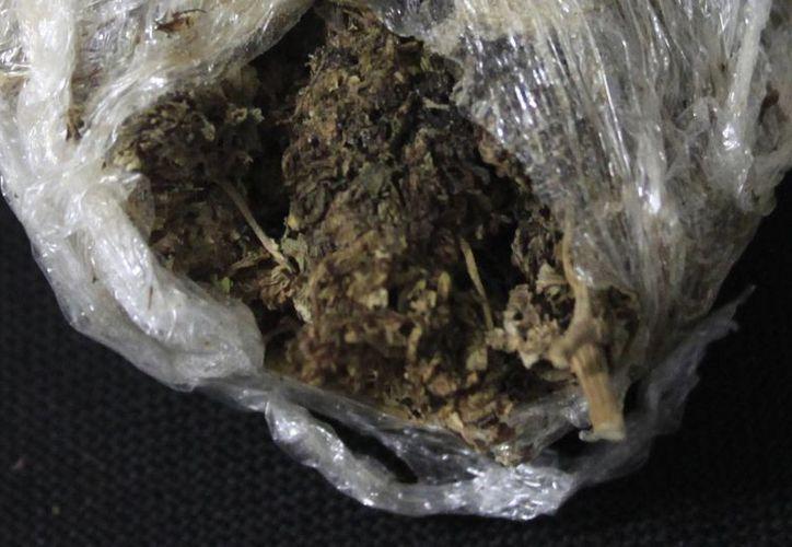 Joven estudiante de 17 años de edad, fue asegurado con 126 gramos de marihuana. (Harold Alcocer/SIPSE)