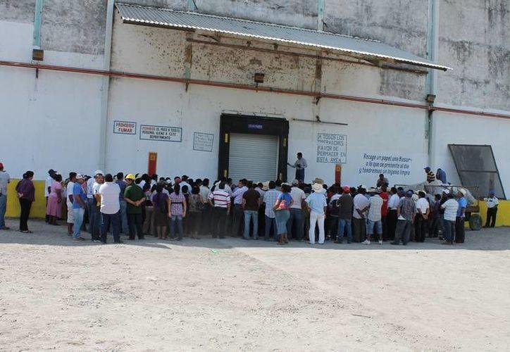 El paro definitivo de labores  estaría iniciando los primeros días del mes de marzo. (Edgardo Rodríguez/SIPSE)