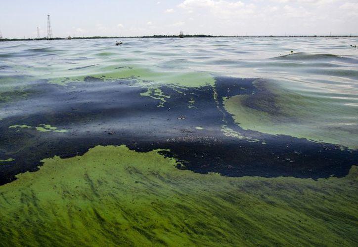 Desconocen la cantidad exacta de combustible derramado. (Imagen de contexto/Reuters)