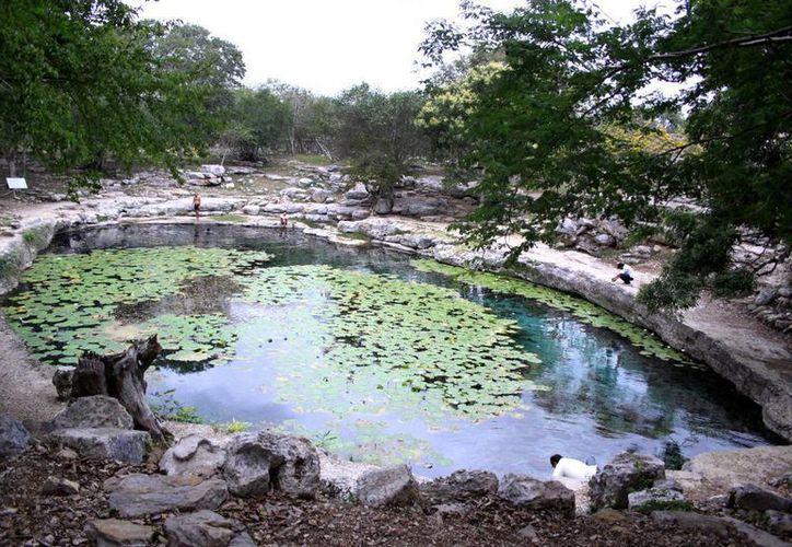 Debido a que no hay un problema de vigilancia que ocupe a todos los cenotes y cuevas de Mérida, una de las propuestas es establecer un programa de educación ambiental para contrarrestar vandalismo, contaminación y otros problemas. (SIPSE)