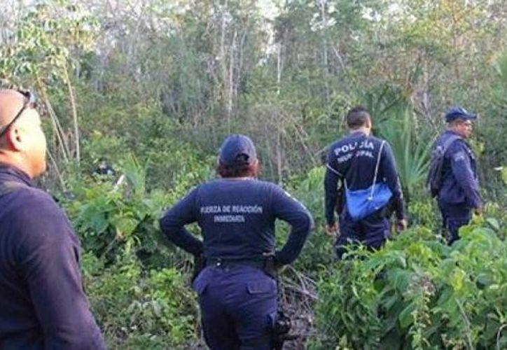 El pequeño fue encontrado en una brecha de un camino viejo, a un kilómetro aproximadamente de Yaxchechal, a las 22 horas. (Redacción/SIPSE)