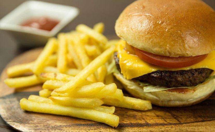 El trabajo puede abrir nuevos caminos a elaboración de procedimientos para combatir la obesidad. (Imagen ilustrativa/Pixabay)