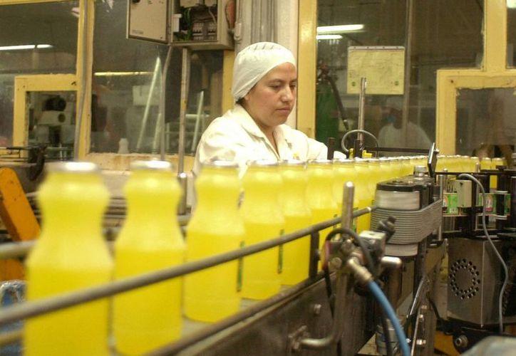 Las bebidas fabricadas tienen buena cantidad de azúcares libres, por lo que se recomienda reducir su consumo. (AP)