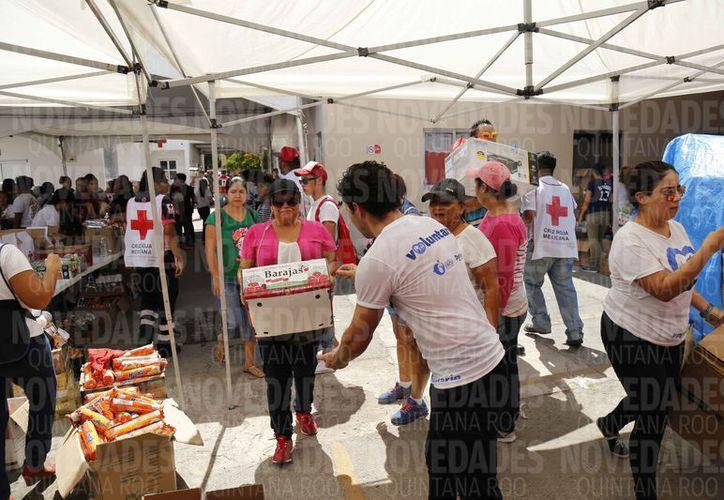 Muchas personas ayudan en la recepción de los víveres y armado de paquetes.  (Jesús Tijerina/SIPSE)