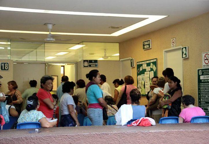 Los servicios médicos en clínicas y hospitales del IMSS aumentaron un 50 % este fin de semana debido a posibles afectados por virus del dengue y chikungunya. (SIPSE)