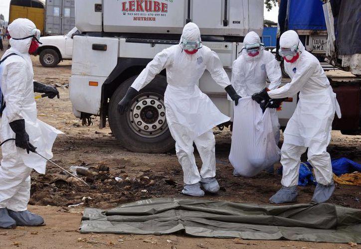 Empleados de salud cargan el cadáver de un hombre, que se cree murió de ébola, y que fue abandonado en una calle, en Monrovia, capital de Liberia. (Agencias)