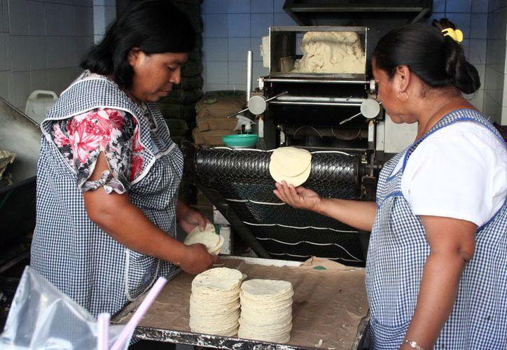 """Molineros mantendrán el precio de la tortilla """"hasta donde sea posible"""". (Foto: Milenio Novedades)"""