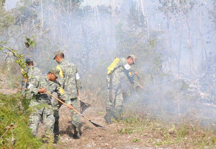 Los elementos dejaron a un lado el armamento para iniciar el combate al incendio. (Eric Galindo/SIPSE)