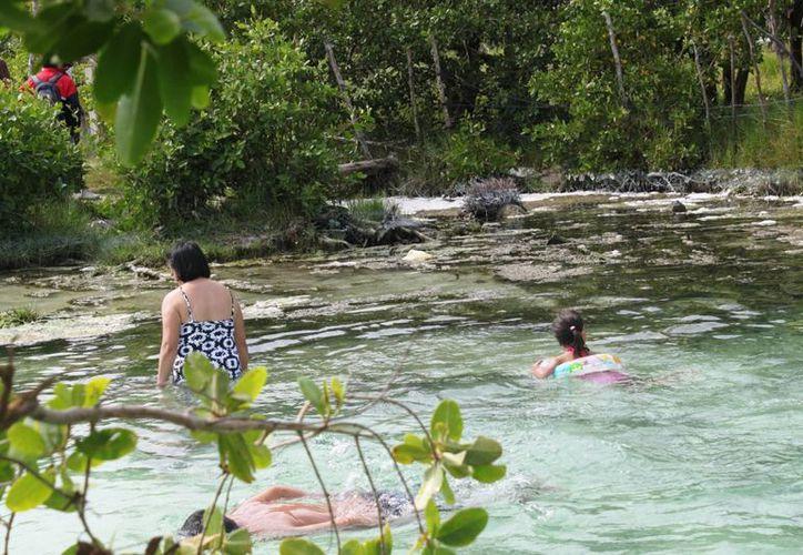 Ambientalistas reclaman la aprobación del reglamento de cenotes. (Daniel Pacheco/SIPSE)