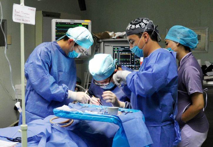 Las cirugías de cadera y rodillas son muy nobles, García Quiroz aseguró que en un mes el paciente ya camina. (Archivo/SIPSE)