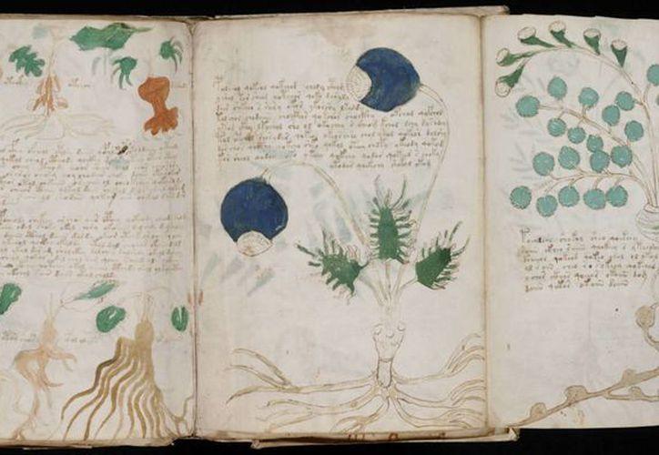 El libro podría estar redactado al menos parcialmente en una lengua azteca. (jornadadiaria.com)