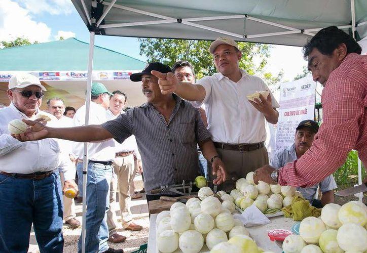 El gobernador Rolando Zapata estará presente este martes en 'El 6° Congreso Internacional de Familia Yucatán 2015'. (SIPSE)