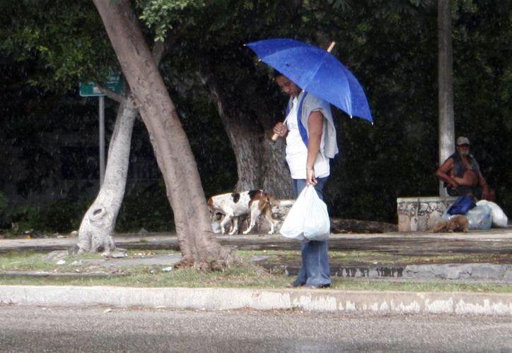 El norte llegó a la Península de Yucatán acompañado de lloviznas. (Christian Ayala/SIPSE)