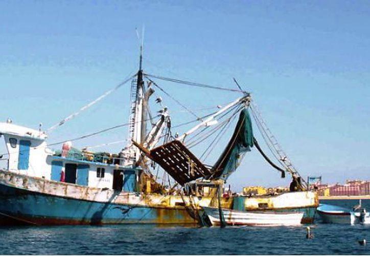 Buscan frenar la pesca furtiva en el Estado. (Foto: Milenio Novedades)