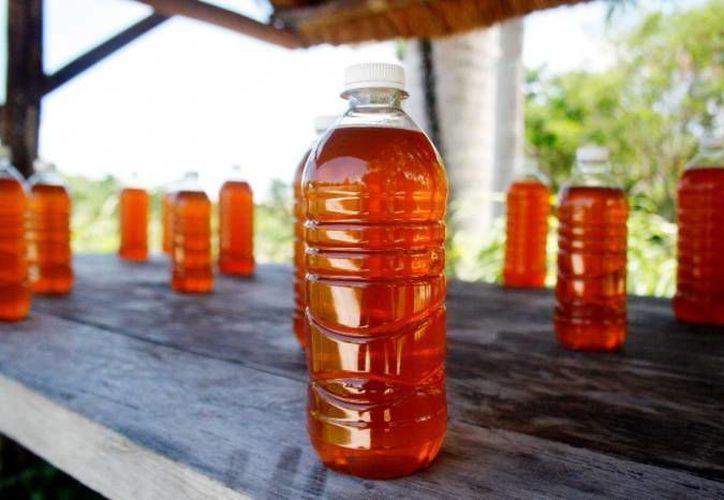La apicultura genera una producción cercana a mil toneladas anuales. (Octavio Martínez/SIPSE)