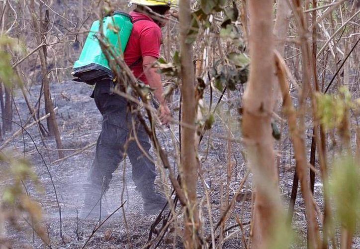 El combate de incendios en Yucatán se realiza con moderna tecnología vía satelital. (Imagen de contexto/SIPSE)