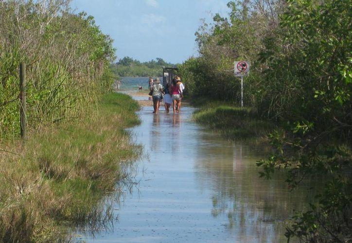 Los visitantes prefieren ir a la laguna que al balneario ejidal por su economía. (Javier Ortiz/SIPSE)